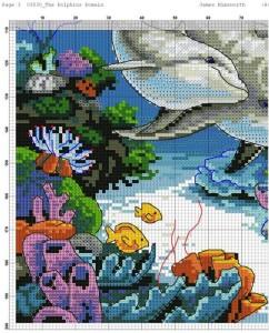 дельфины 1