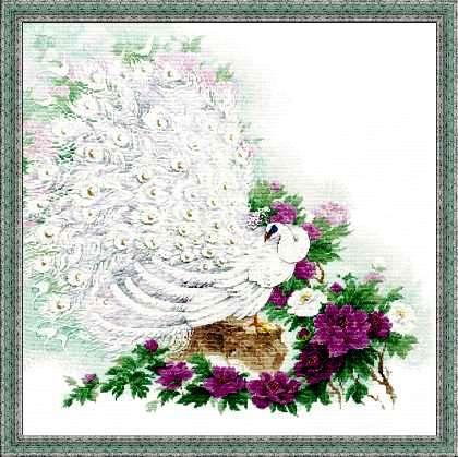 Павлин белый схема вышивки