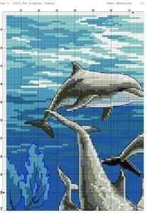 дельфины 3